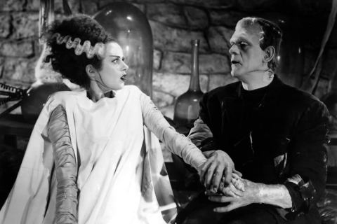 T100_movies_BRIDE OF FRANKENSTEIN