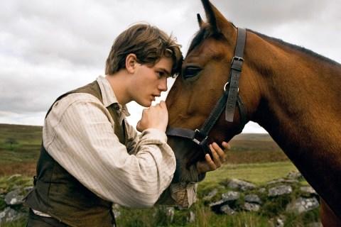 War Horse Q&A