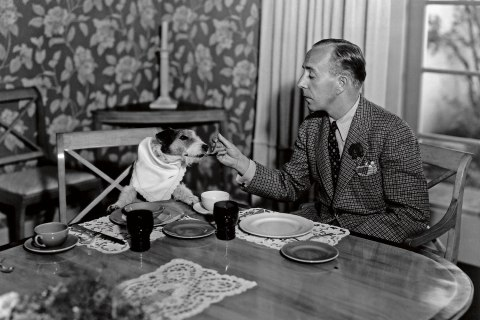 Charles Butterworth dines with his wire fox terrier, in 1935.