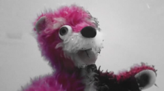 Pink Teady Bear
